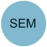 blue-circle-SEM